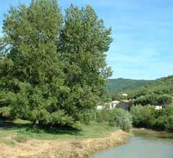 South France holiday - river in Couiza