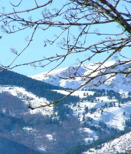 Winter  holiday in Aude, Languedoc Roussillon, South             France
