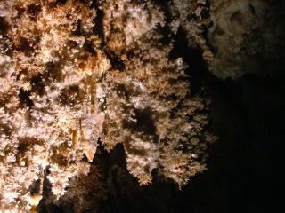 Caves in South France