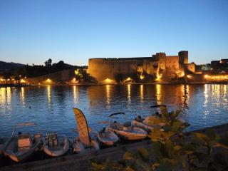 Collioure Fort at night